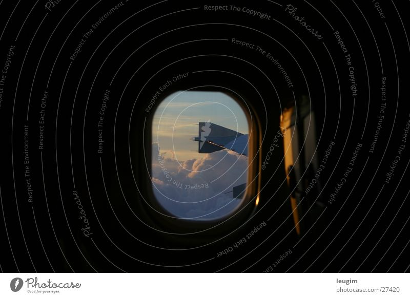 My Choice Flugzeug Wolken Licht gelb Fenster Luftverkehr Himmel Flügel blau