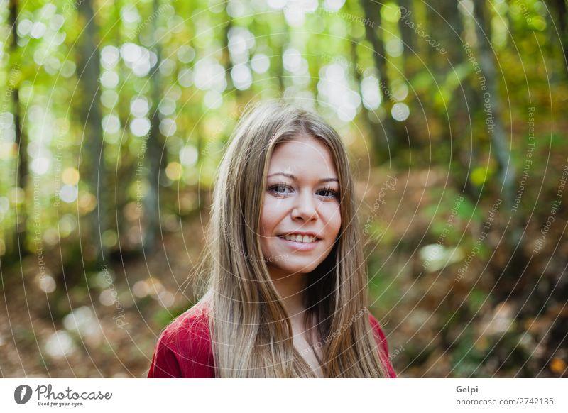 Schöne Frau in einem schönen Wald Lifestyle Glück Gesicht Freiheit Mensch Erwachsene Natur Herbst Wind Baum Park Mode blond Lächeln Erotik frisch lang natürlich