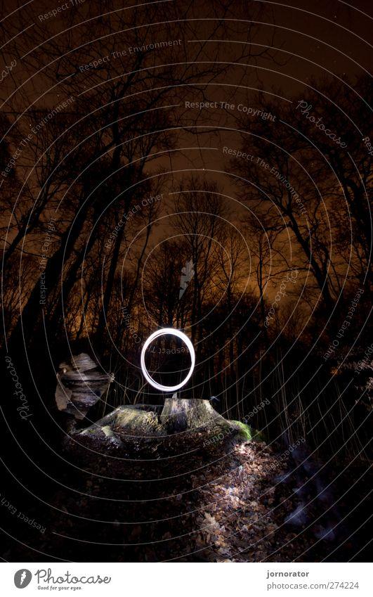 Lightscribe Art IV - Illuminated Circle Natur weiß schwarz Wald dunkel Wege & Pfade Beleuchtung orange Kreis geheimnisvoll spukhaft glühend Baumstumpf
