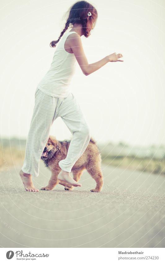 ungezwungene Kindheit Spielen feminin Leben 1 Mensch Wege & Pfade brünett langhaarig Zopf Haustier Hund Elo Tier Tierjunges laufen Zusammensein schön niedlich