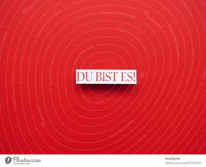 DU BIST ES! Schriftzeichen Schilder & Markierungen Kommunizieren Liebe rot weiß Gefühle Zufriedenheit Lebensfreude Begeisterung Geborgenheit Sympathie