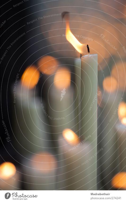 Kerzenlicht Tod Wärme Stimmung Feuer Trauer Tiefenschärfe Erinnerung Kerzenschein Docht Flackern Kerzenflamme