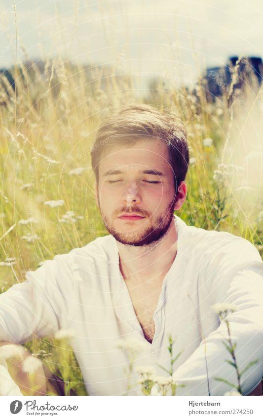 Sommerlicht Mensch Mann Natur Jugendliche Sonne Pflanze Sommer ruhig Erwachsene Erholung Umwelt Wiese Wärme Gras träumen Park