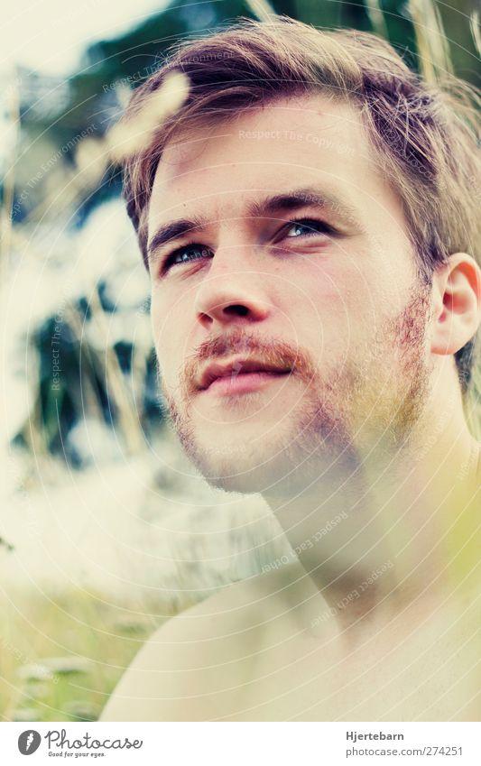 Sommerluft Zufriedenheit Garten Mensch maskulin Junger Mann Jugendliche 1 18-30 Jahre Erwachsene Umwelt Natur Pflanze Sonne Sonnenlicht Schönes Wetter Gras