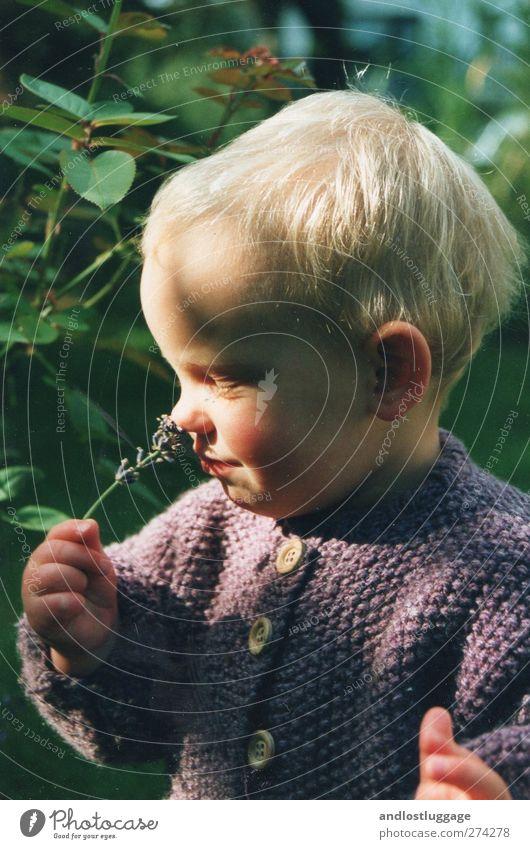 riecht gut! Natur grün Mädchen Blume Erholung Glück Zufriedenheit blond Kindheit natürlich Sträucher Warmherzigkeit niedlich Lächeln berühren violett