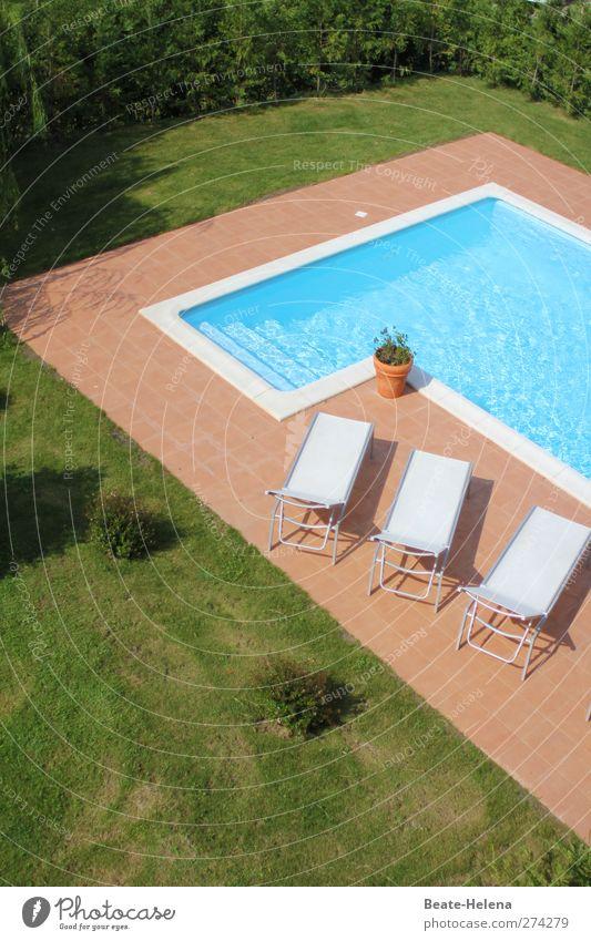 Waiting for the sun blau Ferien & Urlaub & Reisen weiß grün Sommer ruhig Erholung Garten Park Lifestyle Schwimmbad Sauberkeit Wellness Liege Sommerurlaub