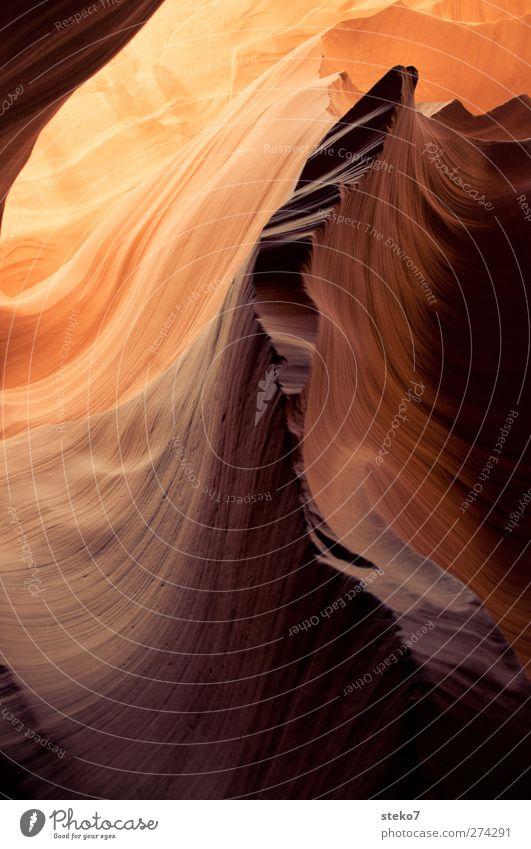 stillstand gelb Wärme Felsen gold außergewöhnlich Leichtigkeit Wellenform Antelope Canyon