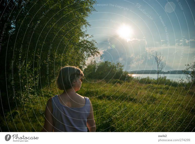 Vorgang Ausflug Mensch feminin Frau Erwachsene Kopf Rücken Arme 1 Umwelt Natur Landschaft Pflanze Wasser Himmel Wolken Horizont Klima Wetter Schönes Wetter