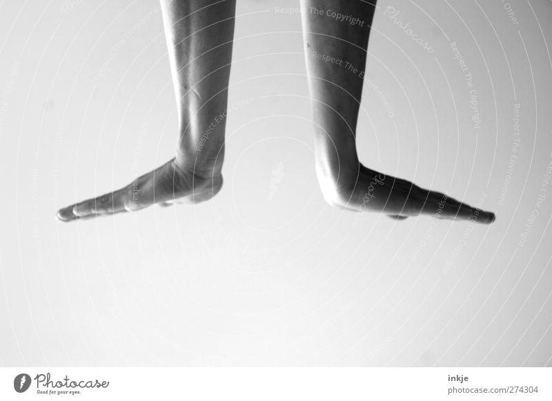 Gebärdensprache [ heute: Seehund ] Leben Hand 1 Mensch machen Bewegung gelenkig gestikulieren Vor hellem Hintergrund strecken Symmetrie flach Schwarzweißfoto
