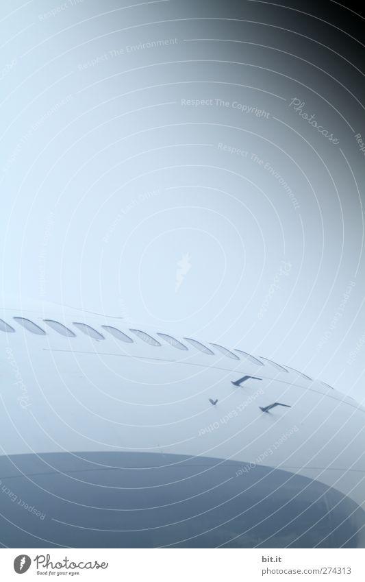 Haltegriffe für den blinden Passagier - UT S/HD 2012 Himmel blau Ferien & Urlaub & Reisen Ferne Freiheit Luft Horizont Flugzeugfenster Klima hoch Tourismus modern Verkehr Flugzeug Luftverkehr Abenteuer