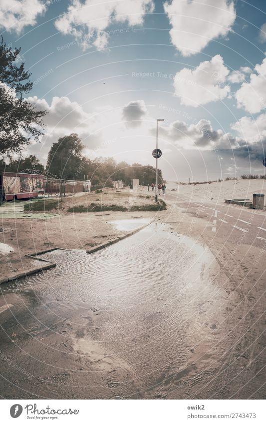 Promenade Umwelt Natur Landschaft Himmel Wolken Sonne Baum Sträucher Ostsee Sand Uferpromenade Kolberg Kolobrzeg Polen Osteuropa Straße Wege & Pfade