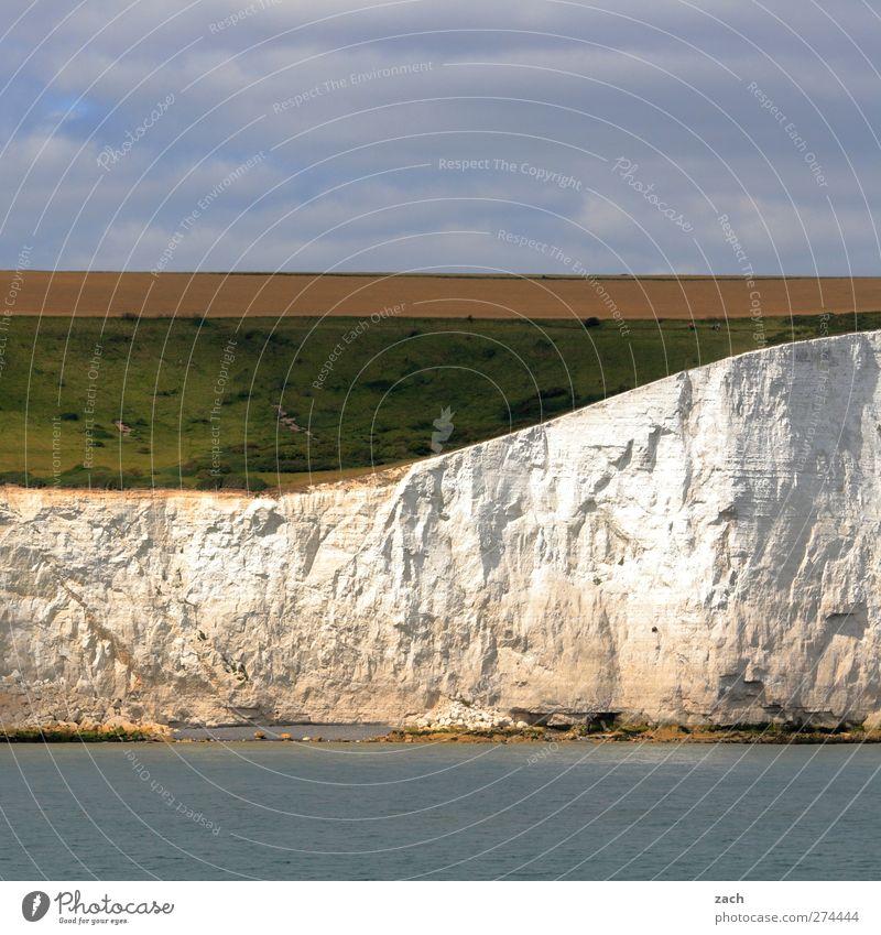 Weiße Klippen Umwelt Natur Landschaft Wasser Himmel Pflanze Gras Feld Felsen Küste Meer Kanal Ärmelkanal Insel England weiße Klippen Stein schön blau grün