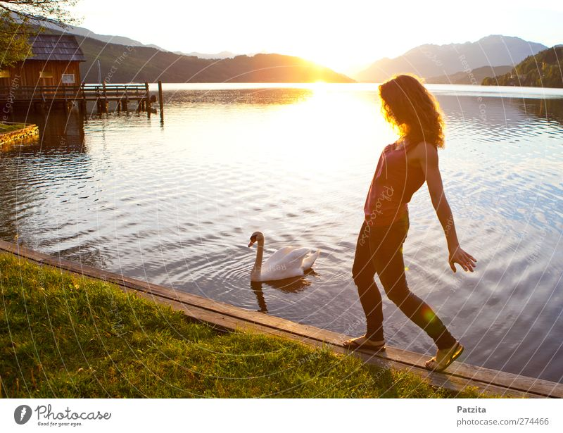 Schwanensee Frau See Sonnenuntergang Gegenlicht Silhouette Tanzen Abend Abenddämmerung Licht Sonnenstrahlen Wasser gehen Spaziergang Freizeit & Hobby Sommer