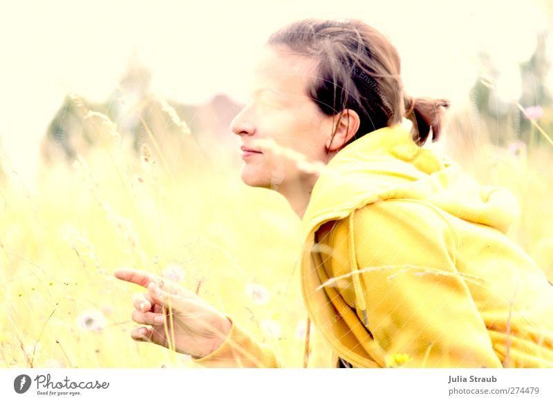 Eni Mensch Frau Jugendliche schön Sommer Pflanze Blume Erwachsene gelb Wiese feminin Gras Junge Frau braun gold 18-30 Jahre