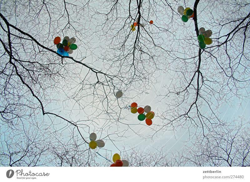 Luftballons Lifestyle Freizeit & Hobby Spielen Winter Feste & Feiern Umwelt Natur Baum gut mehrfarbig Schmuck Dekoration & Verzierung Himmel hell Farbfoto