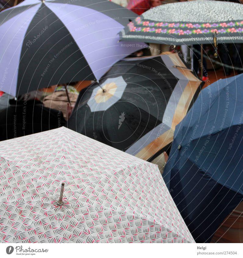 Schirmherrschaft... schlechtes Wetter Regen Regenschirm Kunststoff Muster berühren festhalten warten authentisch außergewöhnlich dunkel Zusammensein einzigartig