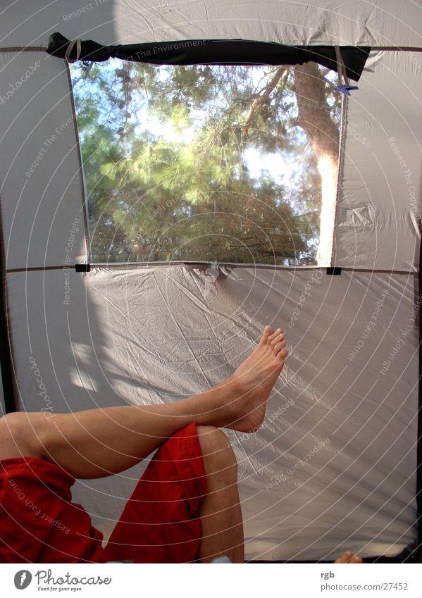 relaxxx Mann Natur rot Ferien & Urlaub & Reisen Erholung Fenster grau träumen Fuß Beine Freizeit & Hobby Hose Camping Zehen Zelt