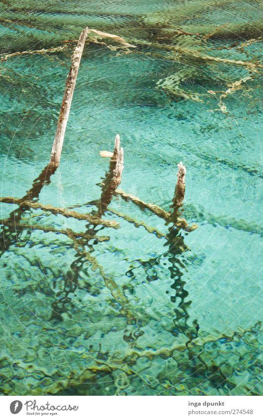 leichter Seewind Umwelt Natur Landschaft Urelemente Wasser Wassertropfen Seeufer China Sichuan Asien fantastisch kalt schön blau rein Tourismus