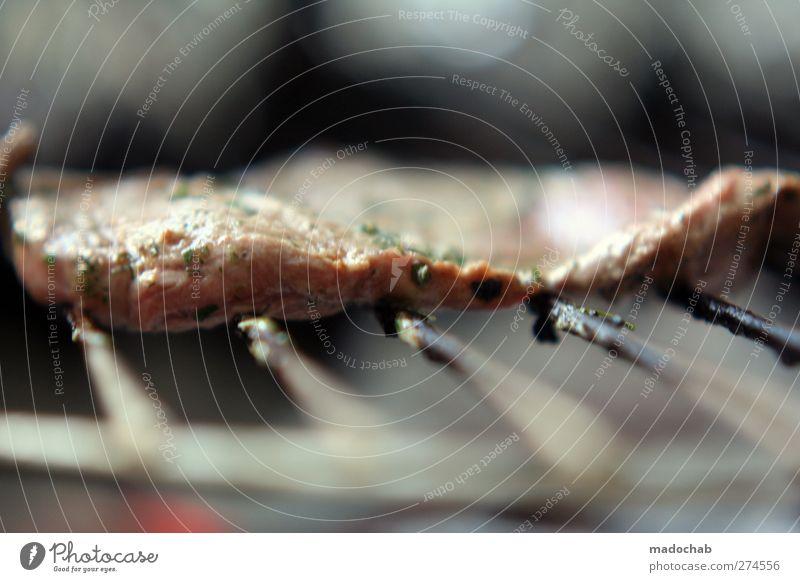 Steak or die Lebensmittel Fleisch Ernährung Abendessen Duft lecker Grillen Grillrost Makroaufnahme Farbfoto Gedeckte Farben Außenaufnahme Menschenleer