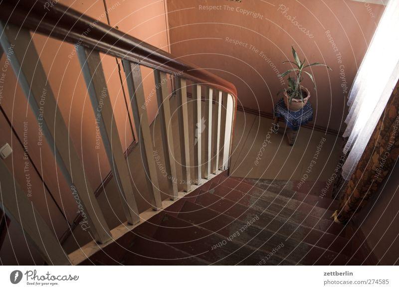 Treppe runter Häusliches Leben Wohnung Haus Innenarchitektur Raum Bauwerk Gebäude Architektur Mauer Wand alt hässlich Treppenhaus Treppengeländer Treppenabsatz
