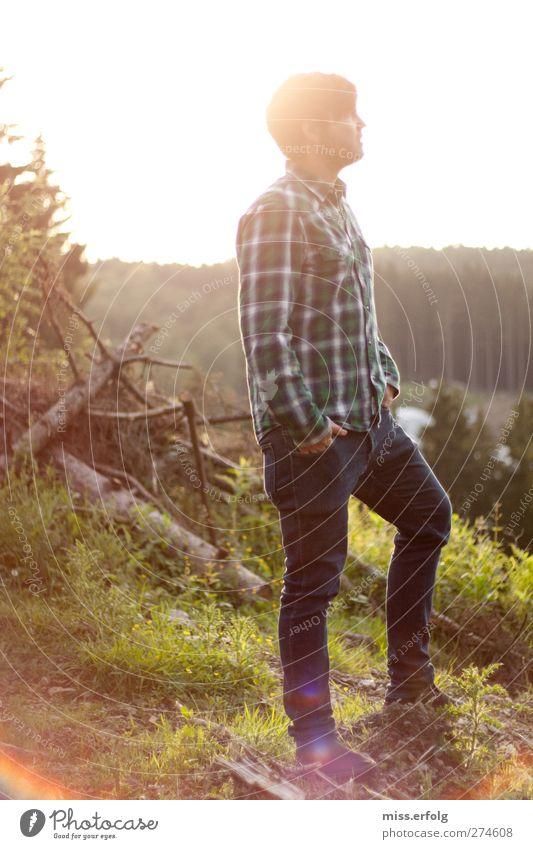 Ein Männlein steht im Walde II Mensch Mann Natur Jugendliche Baum Sommer Pflanze Freude Tier Erwachsene Umwelt Ferne Landschaft Glück Stil