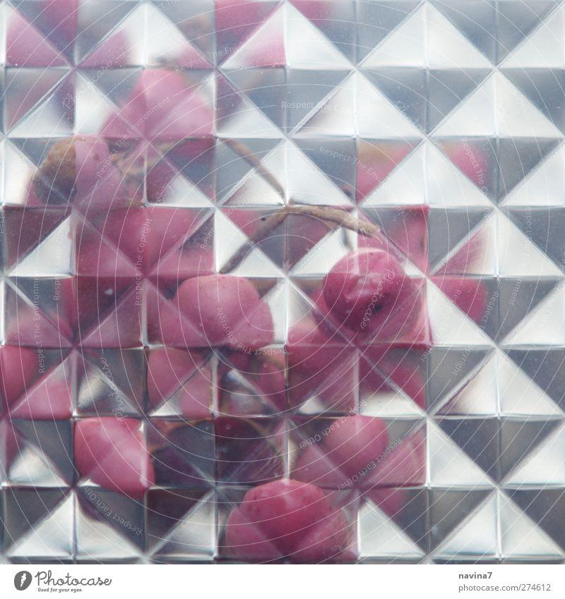 rosa Pfeffer exotisch silber Geometrie Kaleidoskop Farbfoto Innenaufnahme Detailaufnahme Muster Menschenleer Textfreiraum oben
