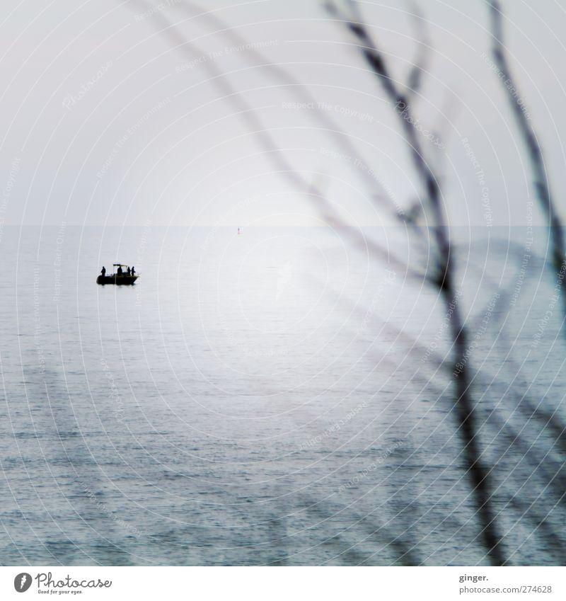 Hiddensee | Stiller Moment Meer Einsamkeit ruhig Ferne Horizont Stimmung Wasserfahrzeug Wellen Ausflug Sträucher Aussicht Momentaufnahme besinnlich Bootsfahrt stahlblau