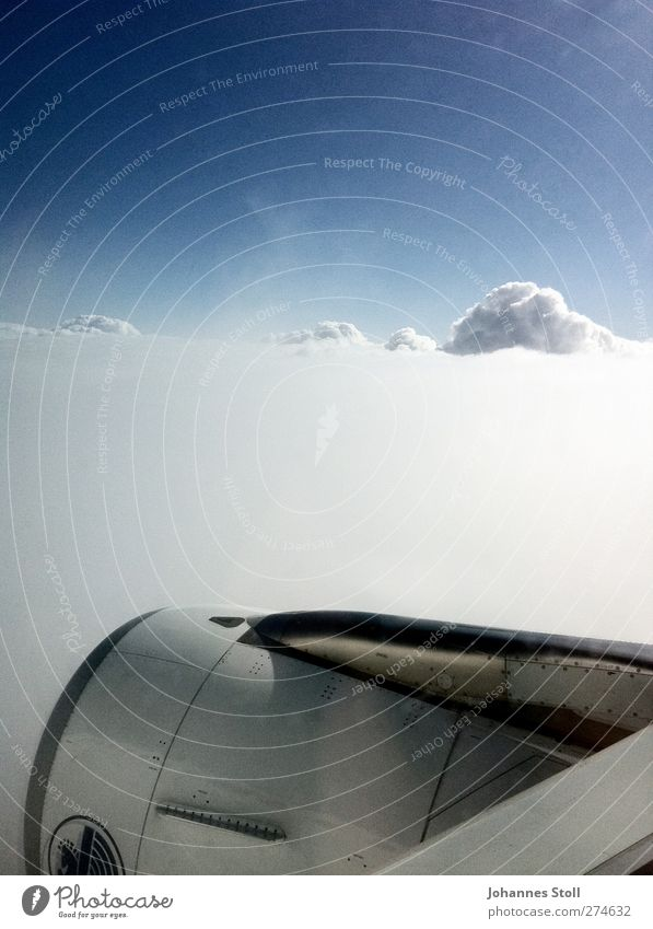 Schneeturbine Himmel Natur blau Ferien & Urlaub & Reisen weiß Wolken oben Freiheit Luft fliegen frei Tourismus Verkehr Flugzeug Luftverkehr