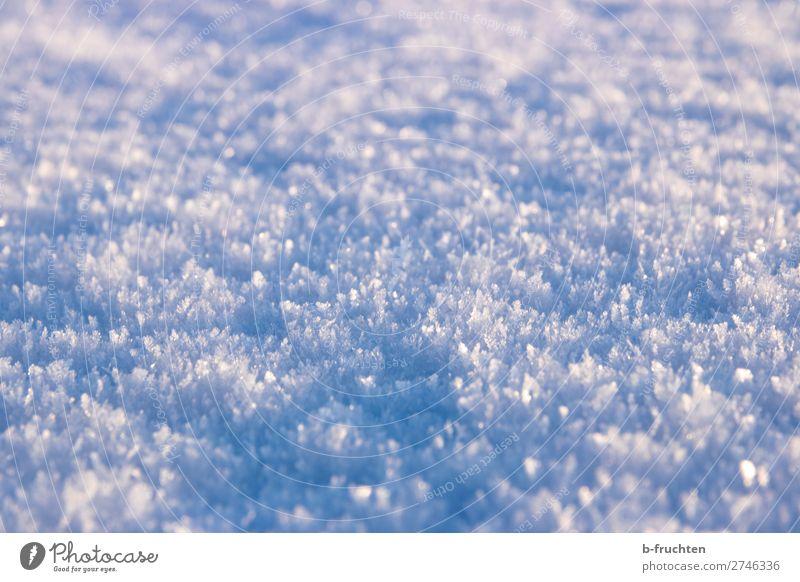 Schnee, Schneekristalle Winter Eis Frost beobachten entdecken glänzend frei frisch kalt schön blau ruhig Makroaufnahme bodennah Kristallstrukturen Schneedecke