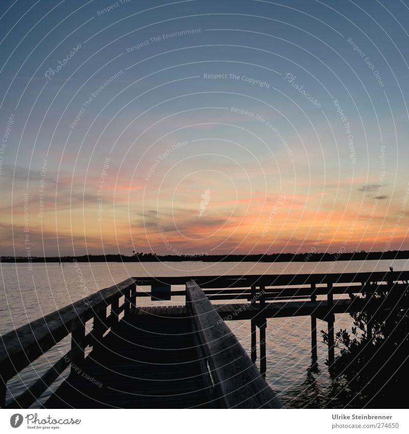 Near nature Umwelt Natur Landschaft Pflanze Luft Wasser Himmel Wolken Nachthimmel Horizont Sonnenaufgang Sonnenuntergang Schönes Wetter Sträucher Küste Seeufer