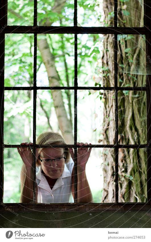 AST5 | Blick hinein Mensch feminin Frau Erwachsene Leben Kopf Arme Hand 1 45-60 Jahre Umwelt Natur Pflanze Baum Fenster Fensterrahmen blond Lächeln warten