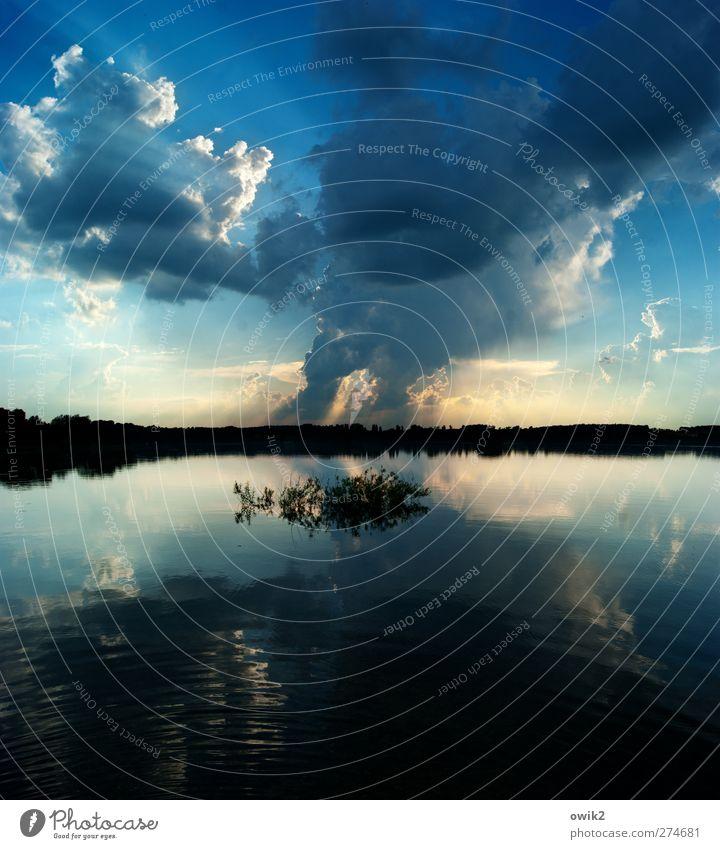 Wasser und Wolken Umwelt Natur Landschaft Pflanze Himmel Gewitterwolken Horizont Klima Wetter Schönes Wetter Sträucher Wald Küste Seeufer dunkel gigantisch groß