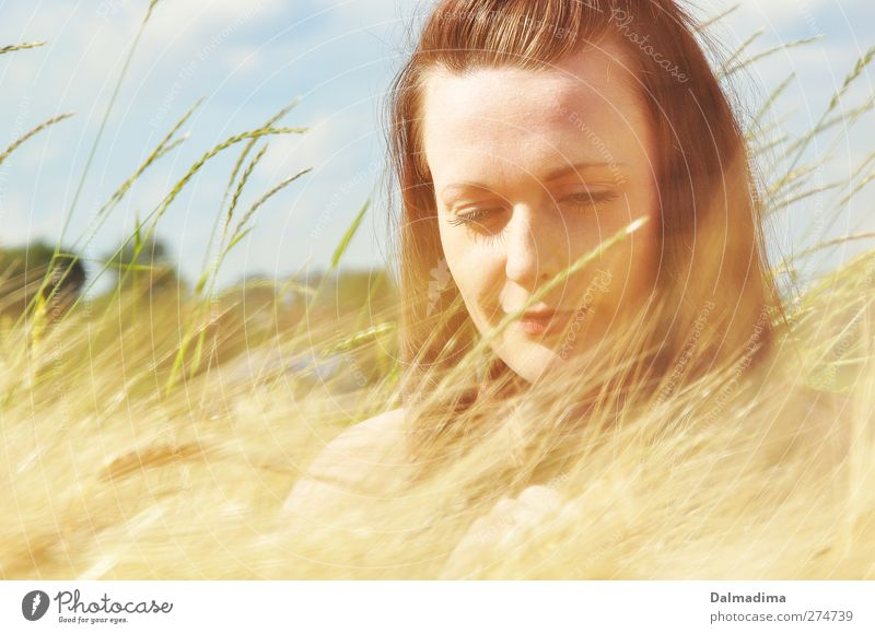 Sommer Zeit Mensch Natur Jugendliche schön Erwachsene gelb feminin Leben Glück Junge Frau Zufriedenheit Feld gold natürlich 18-30 Jahre Fröhlichkeit