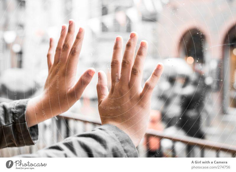 let's raise our hands to Germany Mensch Jugendliche Hand schön feminin Junge Frau außergewöhnlich elegant verrückt Finger Coolness einzigartig berühren Menschenmenge durchsichtig Fensterscheibe