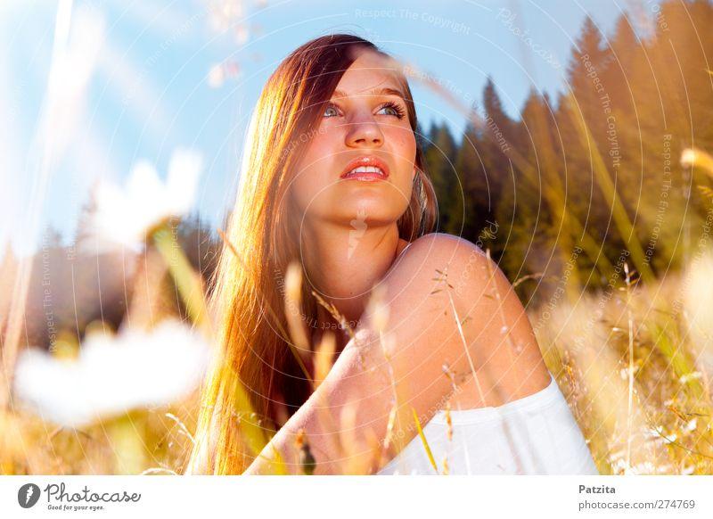verträumt Wiese Blume Gras Frau sitzen Sonnenuntergang Gegenlicht träumen nachdenklich Sonnenstrahlen Himmel Blumenwiese Margerite Abenddämmerung Jugendliche