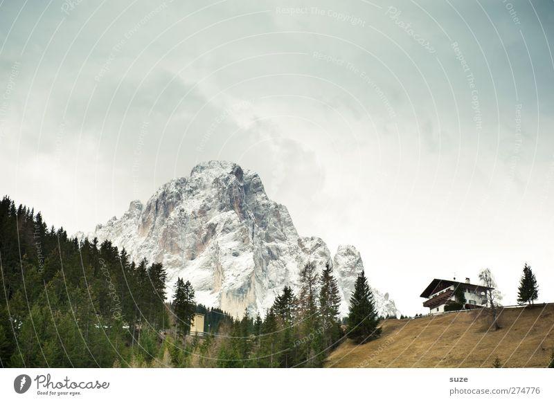 Berghütte Himmel Natur Ferien & Urlaub & Reisen Sommer Pflanze Haus Wald Umwelt Landschaft Wiese kalt Berge u. Gebirge Klima authentisch Häusliches Leben Urelemente