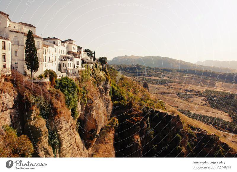 Ronda [LIV] weiß Baum Haus Felsen außergewöhnlich hoch gefährlich Sträucher Hügel Spanien Wahrzeichen Sehenswürdigkeit Schlucht Klippe Altstadt Stadtrand