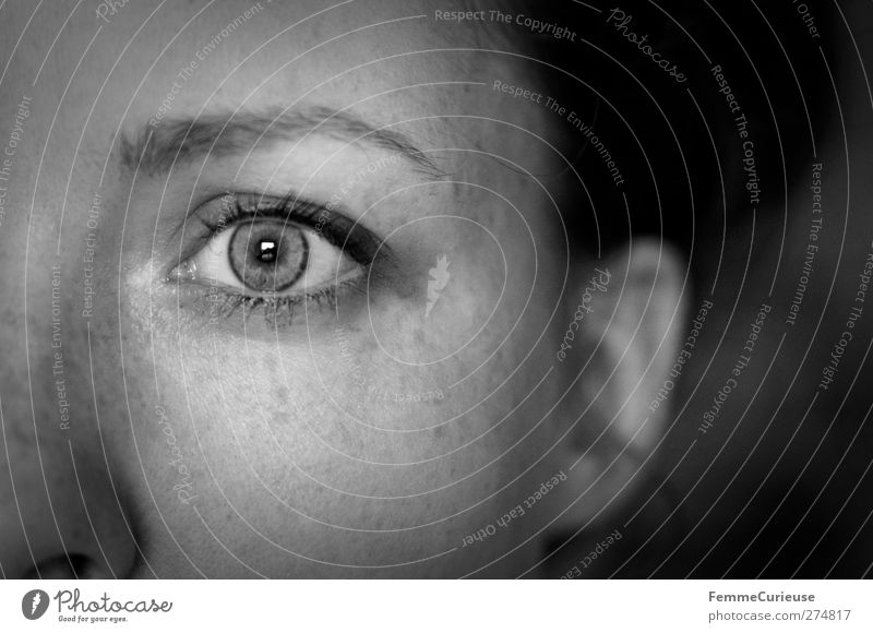 Etwas im Auge behalten. Mensch Frau Jugendliche Erwachsene Gesicht Auge dunkel feminin klein Junge Frau Kopf 18-30 Jahre Hoffnung beobachten einzigartig Ohr