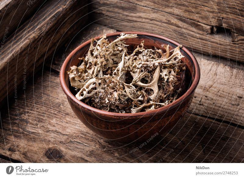Getrocknetes Isländisches Moos Kraut Medizin isländisch Naturmedizin Kräutermedizin natürlich Schalen & Schüsseln Pflanze Kräuterbuch Behandlung Flechten