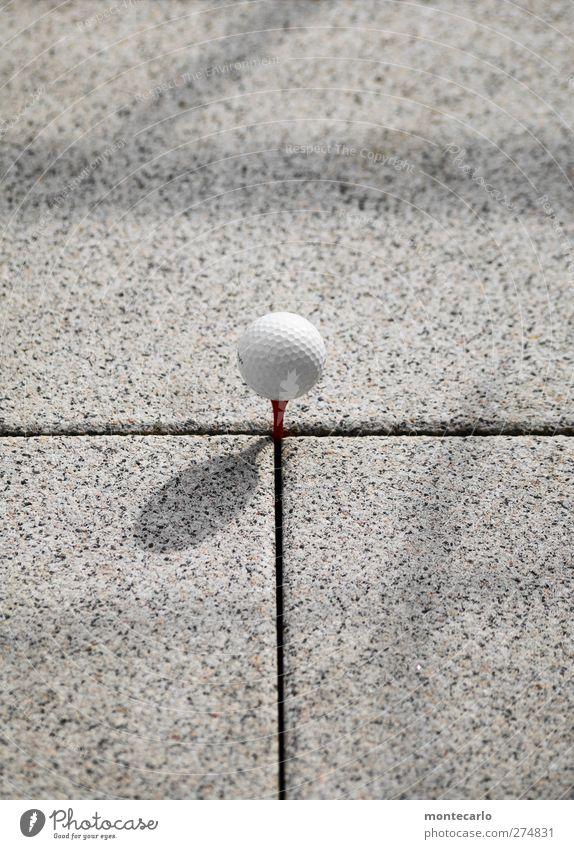 BüroTerrassenGolf Freizeit & Hobby Spielen Golfball Stein Kunststoff rund weiß Farbfoto Außenaufnahme Nahaufnahme Detailaufnahme Menschenleer Textfreiraum oben