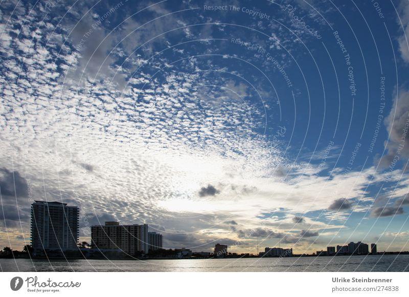 Miami Evening Skyline blau Ferien & Urlaub & Reisen Stadt Haus Ferne kalt Architektur Gebäude Erde Horizont hoch Tourismus Wachstum modern Hochhaus Zukunft
