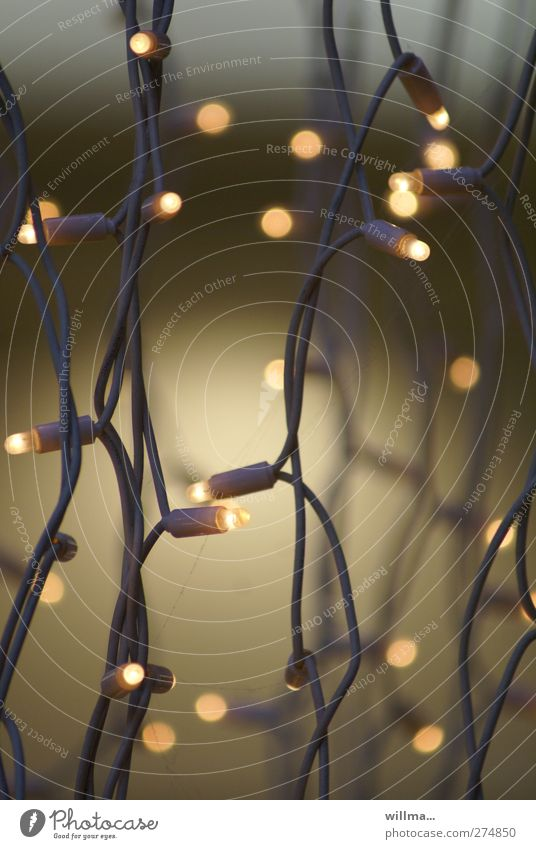 lampenfieber Weihnachten & Advent Beleuchtung Feste & Feiern Lampe glänzend Energiewirtschaft leuchten Dekoration & Verzierung Kerze Illumination Lichterkette