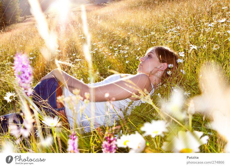 Alice Mädchen Jugendliche Blumenwiese liegen Wiesenblume Sonnenuntergang Sonnenstrahlen Gras verträumt träumen Abend Abenddämmerung Frühling Sommer Frau