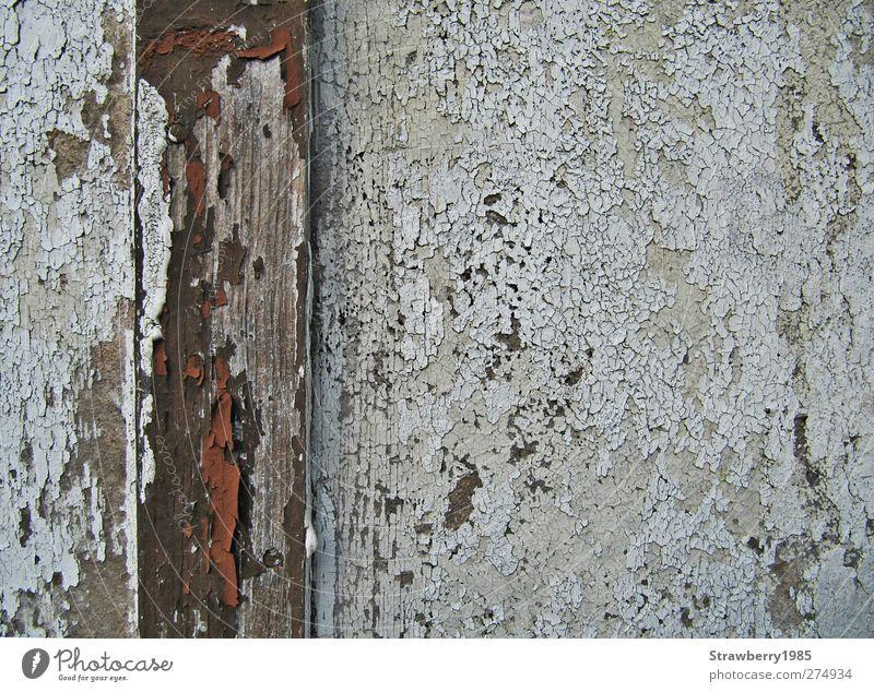 Nicht nur der erste Lack ist ab... alt weiß Wand Holz Farbstoff Mauer braun verfallen Hütte verwittert
