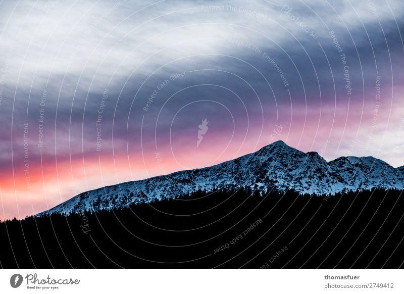 Alpen, Gipfel, Abendrot Ferien & Urlaub & Reisen Ferne Winter Schnee Winterurlaub Berge u. Gebirge wandern Wintersport Umwelt Natur Landschaft Urelemente Erde