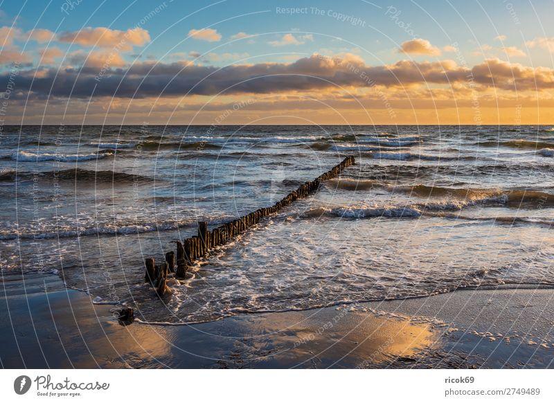 Ostseeküste auf der Insel Moen in Dänemark Erholung Ferien & Urlaub & Reisen Tourismus Strand Meer Natur Landschaft Wasser Wolken Herbst Küste blau gelb Idylle