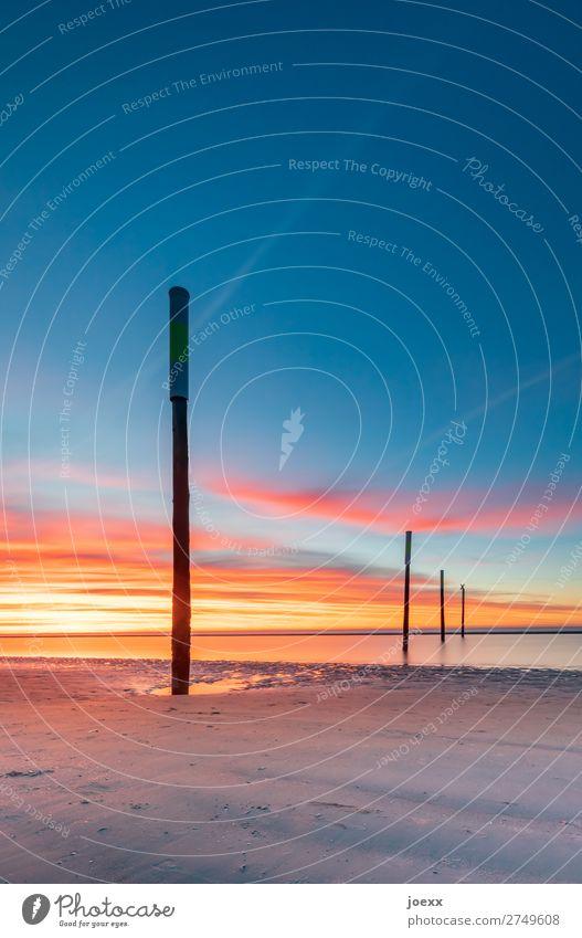 Vollpfosten IV Himmel Sommer blau Landschaft ruhig Strand Holz Küste orange braun Schönes Wetter groß hoch Nordsee