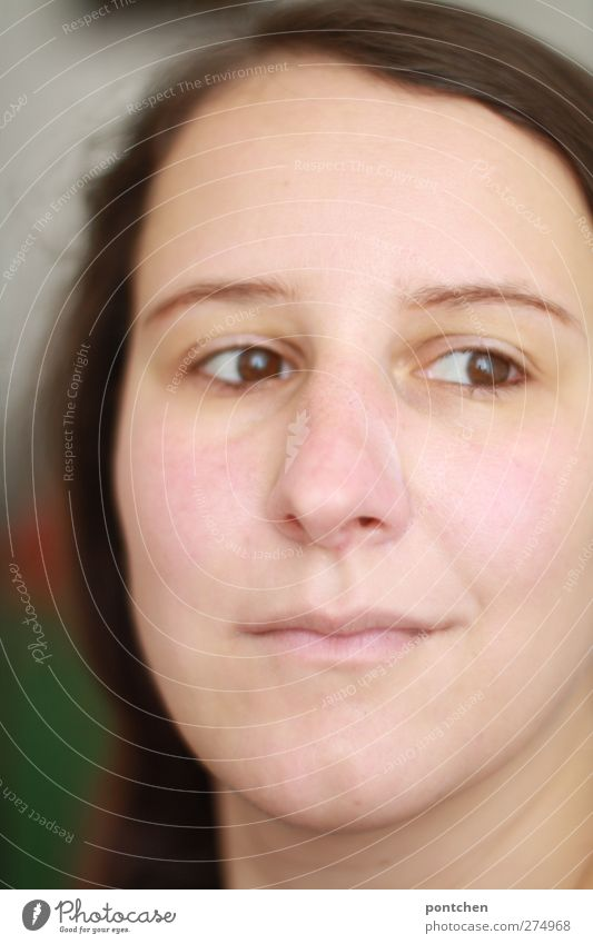 Gesicht einer leicht lächelnden Frau mit braunen Haaren. Mensch Junge Frau Jugendliche Erwachsene Kopf Haare & Frisuren 18-30 Jahre hell Farbfoto
