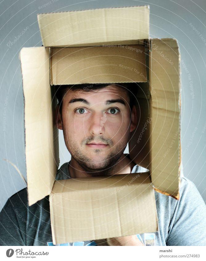 es rappelt in der Kiste Mensch maskulin Mann Erwachsene 1 eckig Karton Gesicht Innenaufnahme Innerhalb (Position) Überraschung Charakter Blick Ausdruck Gefühle