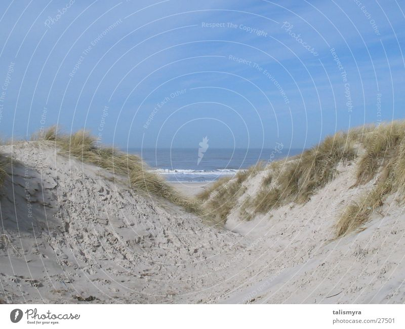 Stranddünen Sand Nordsee Dänemark